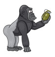 cartoon male of gorilla in perplexity is looking vector image vector image