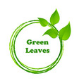 green leaves or leaf graphic icon design vector image vector image
