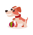 jack russell terrier character playing with ball vector image vector image