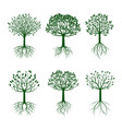 set green trees with roots vector image vector image