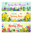 spring flowers banners for holiday greeting vector image vector image