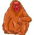 uakari animal cartoon vector image vector image