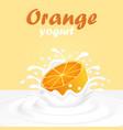 a splash of fruit orange yogurt vector image vector image