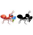 ant holding flower set vector image