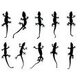 black silhouettes lizards vector image
