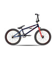 bmx bike in flat style vector image