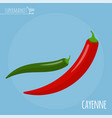 chili pepper flat design icon vector image vector image