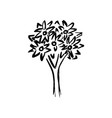 hand drawing tree on white vector image