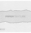 Realistic lacerated white paper texture vector image