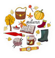 set of hand-drawn autumn elements in circle on a w vector image