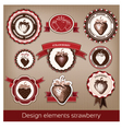 set of vintage and modern icons of strawberries vector image vector image