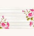 tropical background for your design hibiscus vector image