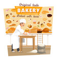 baker knead dough at bakery kitchen vector image vector image