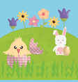 cute rabbit and chick in the field easter vector image vector image