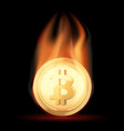 gold coin with bitcoin cryptocurrency in flame vector image vector image