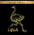 golden and royal hand drawn emblem farm ostrich vector image