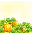 background with pumpkins - EPS10 vector image vector image