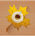 coffee cup on the autumn fall leaves and wooden vector image vector image