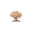plant coffee logo icon design vector image vector image