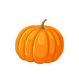 pumpkin fresh rounded vegetable icon isolated vector image vector image