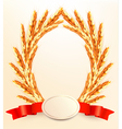 Ripe yellow wheat ears with red ribbons background vector image vector image
