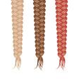 Three braids vector image vector image