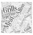 Why is Barbequing So Popular Word Cloud Concept vector image vector image