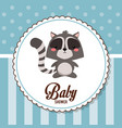 baby shower card invitation cute raccoon vector image