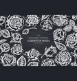 floral design with chalk roses vector image vector image