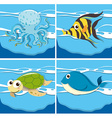 Four different sea animals vector image