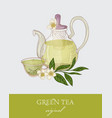 gorgeous teapot transparent glass cup green tea vector image vector image