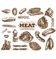 hand drawn fresh farm meat bbq sketch vector image
