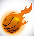 Sports design vector image vector image