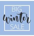 Winter sale hand written inscription vector image vector image