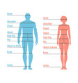 woman and girl size chart human front side vector image
