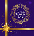 big winter sale with star vector image vector image
