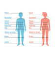 boy and girl size chart human front side vector image vector image