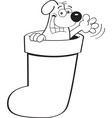 Cartoon dog inside a Christmas stocking vector image vector image