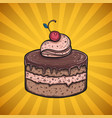 chocolate cake poster vector image