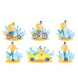 city transport for rent isolated vector image
