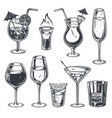 cocktail set wine whiskey tequila martini shot vector image vector image