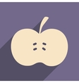Flat with shadow icon and mobile applacation apple vector image vector image