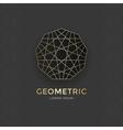 Geometric sacred symbol vector image