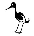 isolated cute stork icon vector image