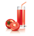 object tomato juice vector image vector image