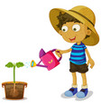 boy watering plant on white background vector image vector image