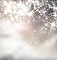 Fireworks Background vector image vector image