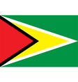 Flag of Guyana vector image vector image