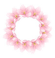sakura cherry blossom wreath vector image vector image