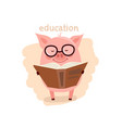 cute pig wearing glasses reading a book vector image
